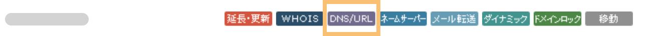 「DNS/URL」